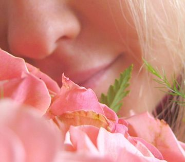 644885_smell_the_roses